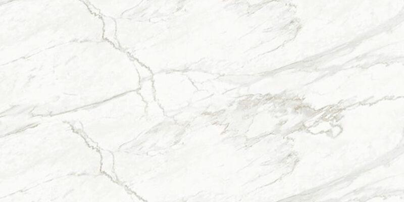 grassi-white-ascale-tau